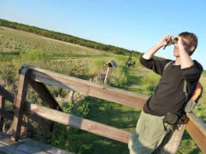 BirdWatchingWetlands