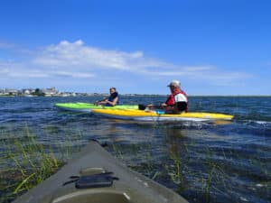 Kayaking On Bass River near the back of West Dennis Beach